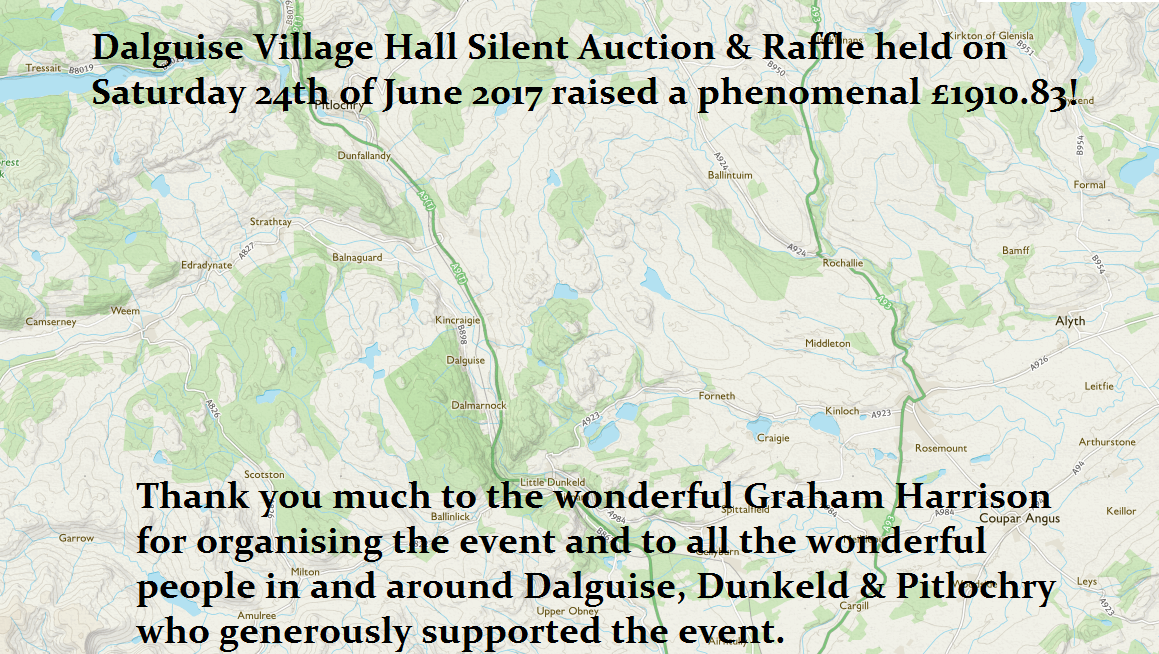 Dalguise Village Hall silent auction